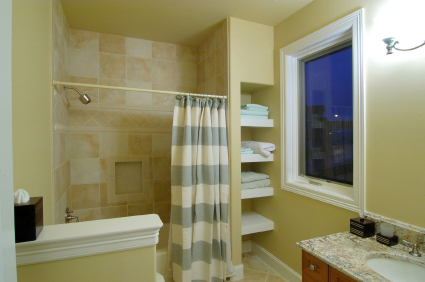 Preventing Mold in Shower