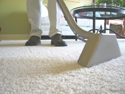 Stanley Steamer Carpet Cleaner - Carpet Cleaners