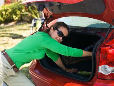 ผลการค้นหารูปภาพสำหรับ push down Car trunk