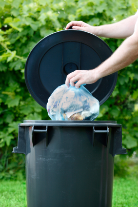 How to get Rid of Maggots in Trash Can Pest Control