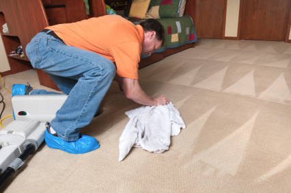 Sears Carpet Cleaning - Carpet Cleaner