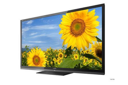 Should I Buy a LCD TV or Plasma TV?