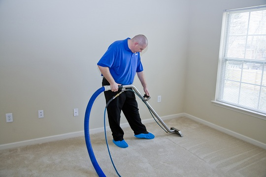 Professional vs Home Carpet Cleaning