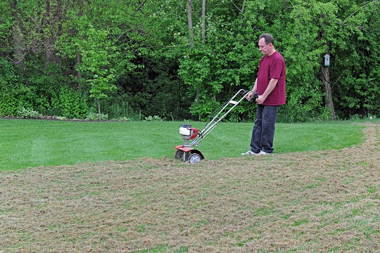 How to Dethatch Lawns