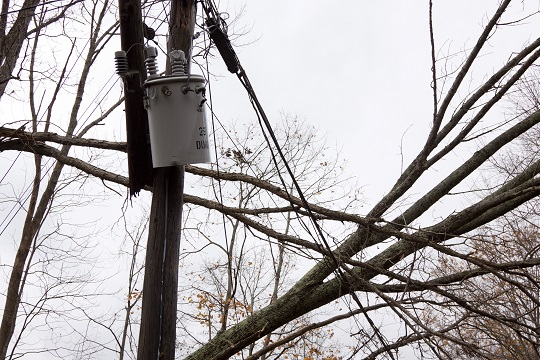 How to Report Downed Power Lines - Electricians