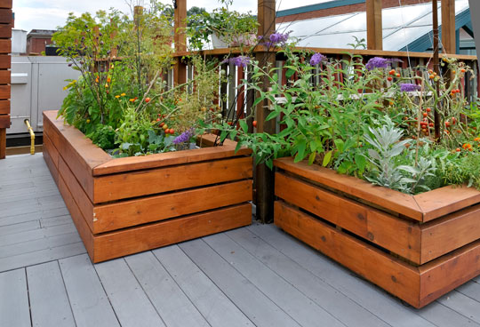 Build A Raised Garden Bed Landscapers Talk Local Blog Talk