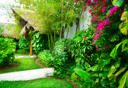 Do you need home landscaping services landscapers for Home landscaping services