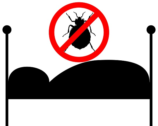 Get Rid of Bedbugs Before Moving - Moving and Storage