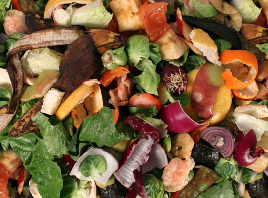 Composting Food Products - Garbage Removal