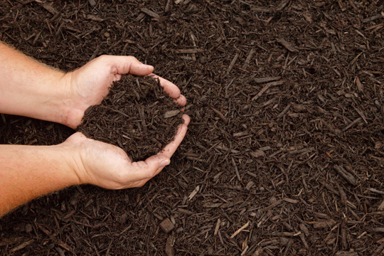 How Much Mulch Should I Buy?