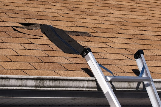 Fixing Roof Shingle Damage
