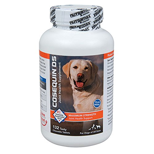 Cosequin DS dog pain medicine